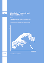 Water Policy, Productivity and Economic Efficiency