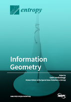 Special issue Information Geometry book cover image