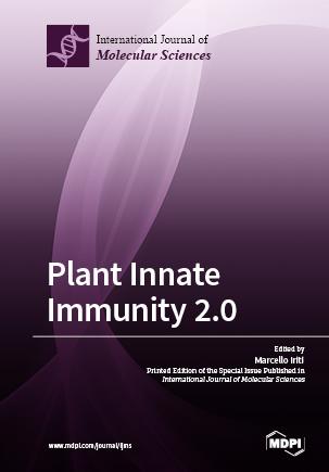 Plant Innate Immunity 2.0