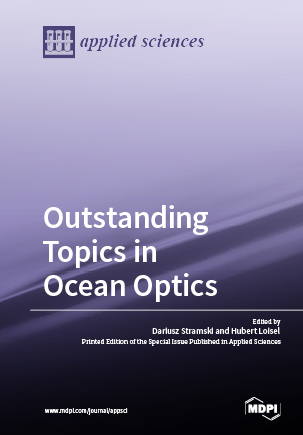 Outstanding Topics in Ocean Optics