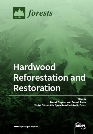 Hardwood Reforestation and Restoration
