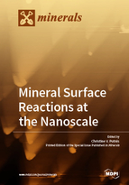 Special issue Mineral Surface Reactions at the Nanoscale book cover image