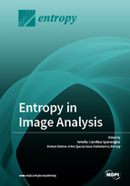 Special issue Entropy in Image Analysis book cover image