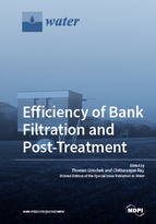 Special issue Efficiency of Bank Filtration and Post-Treatment book cover image