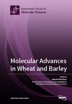 Special issue Molecular Advances in Wheat and Barley book cover image