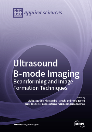 Ultrasound B-mode Imaging: Beamforming and Image Formation Techniques