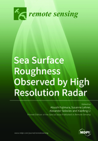 Special issue Sea Surface Roughness Observed by High Resolution Radar book cover image