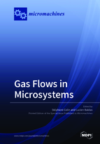 Special issue Gas Flows in Microsystems book cover image