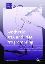 Special issue Synthetic DNA and RNA Programming book cover image