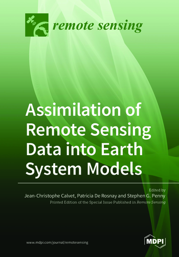 Assimilation of Remote Sensing Data into Earth System Models