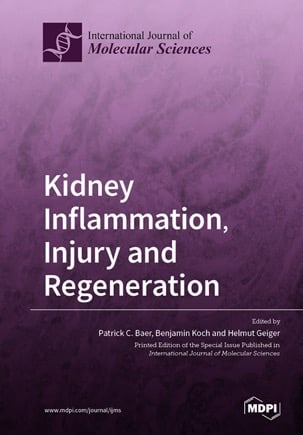 Kidney Inflammation, Injury and Regeneration