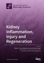 Kidney Inflammation, Injury and Regeneration