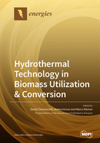 Special issue Hydrothermal Technology in Biomass Utilization & Conversion book cover image