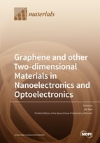 Special issue Graphene and other Two-dimensional Materials in Nanoelectronics and Optoelectronics book cover image