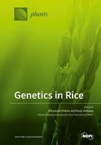 Genetics in Rice