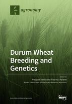 Durum Wheat Breeding and Genetics