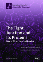 The Tight Junction and Its Proteins
