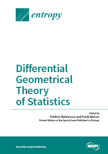 Differential Geometrical Theory of Statistics