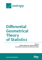 Special issue Differential Geometrical Theory of Statistics book cover image