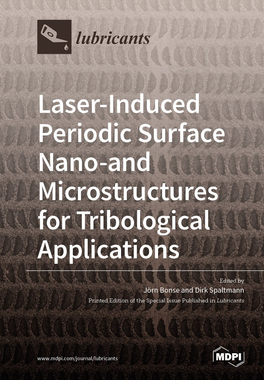 Laser-Induced Periodic Surface Nano- and Microstructures for Tribological Applications