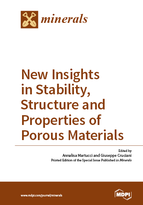 Special issue New Insights in Stability, Structure and Properties of Porous Materials book cover image