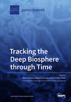 Special issue Tracking the Deep Biosphere through Time book cover image