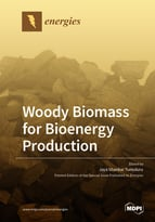 Woody Biomass for Bioenergy Production