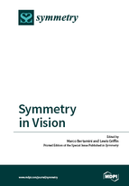 Special issue Symmetry in Vision book cover image