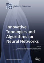 Innovative Topologies and Algorithms for Neural Networks