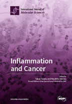 Special issue Inflammation and Cancer book cover image