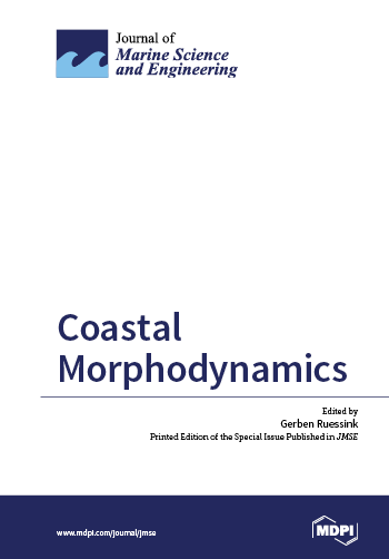 Coastal Morphodynamics
