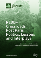 Special issue REDD+ Crossroads Post Paris: Politics, Lessons and Interplays book cover image