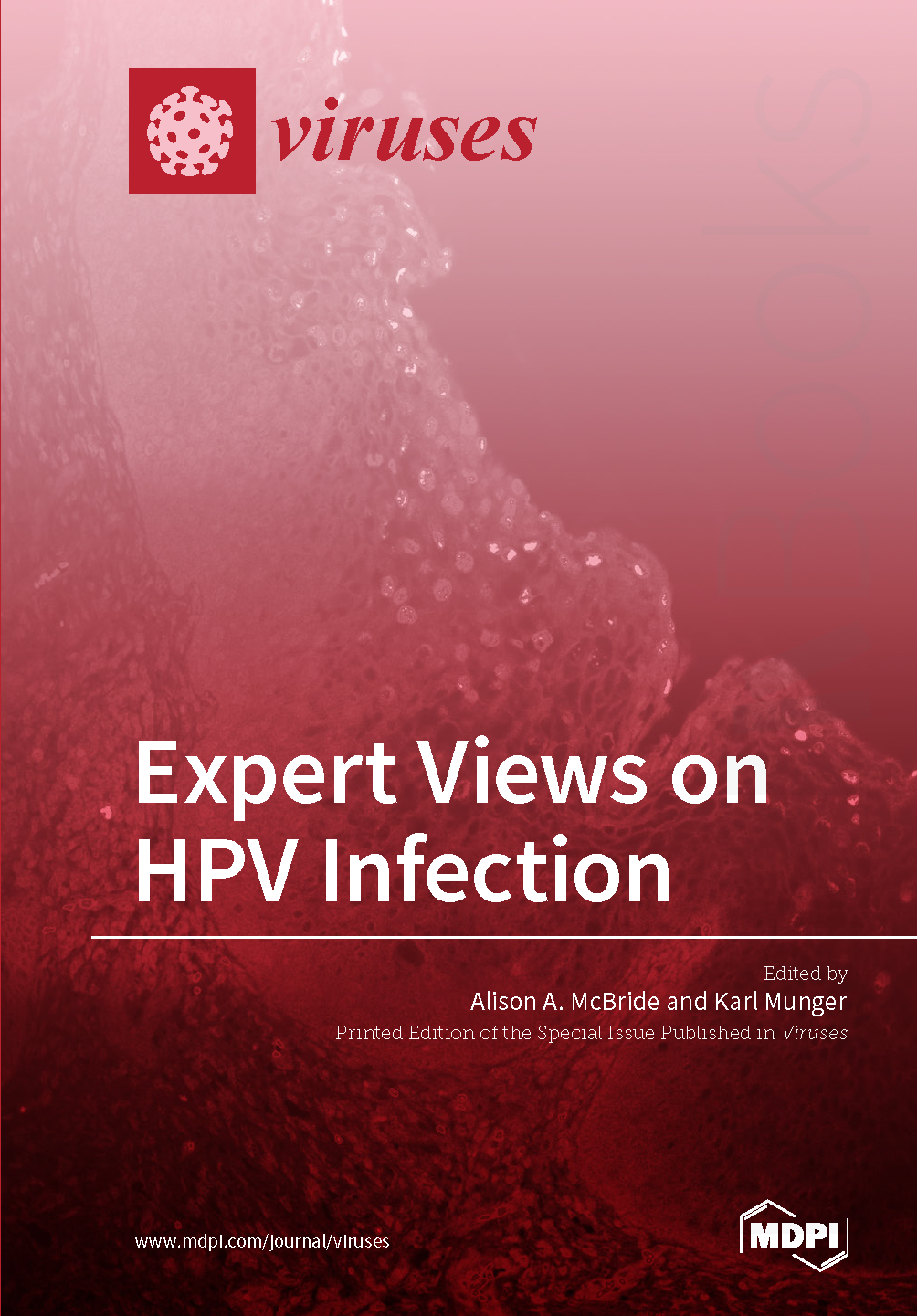 Expert Views on HPV Infection