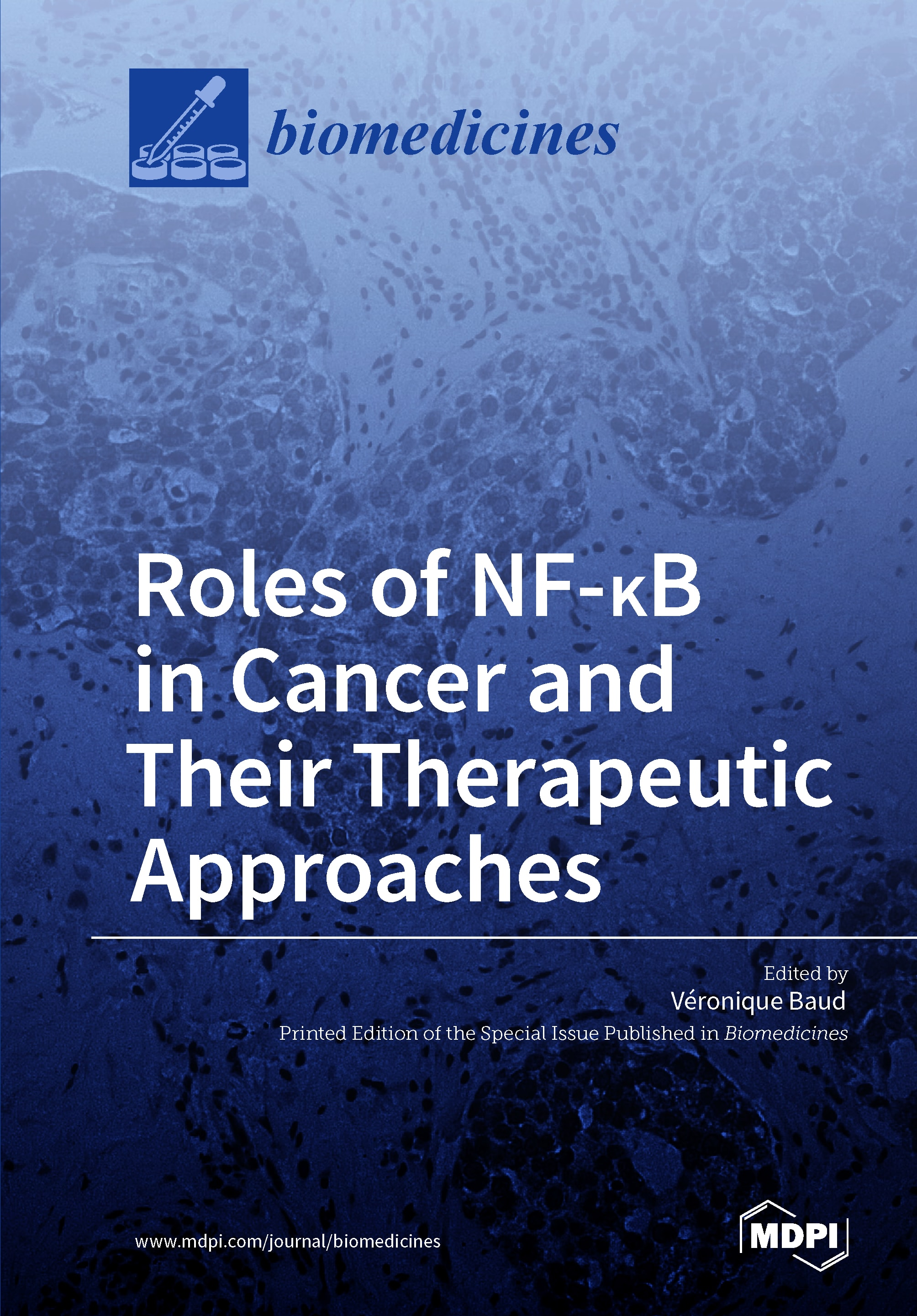 Roles of NF-κB in Cancer and Their Therapeutic Approaches