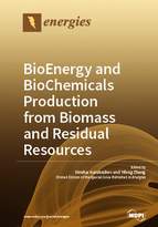 Special issue BioEnergy and BioChemicals Production from Biomass and Residual Resources book cover image