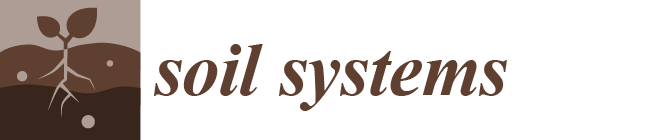 Soil Systems Logo